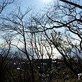 写真: 冬の海・・1