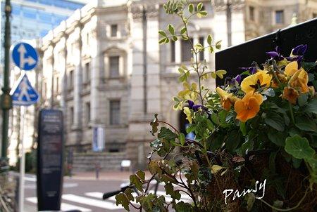 花のある街かど・・