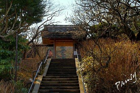 早春の東慶寺にて・・18