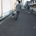 Photos: お父さんと一緒にお散歩体験