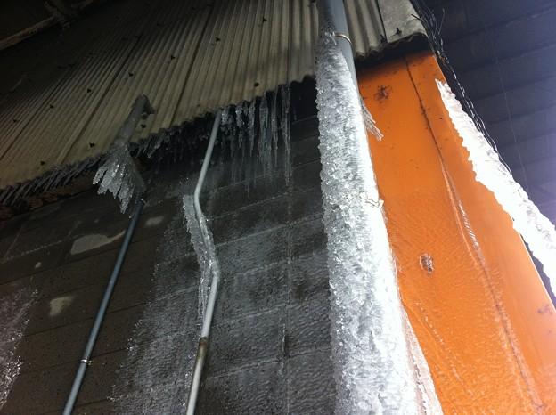 2012年2月 氷の世界 004