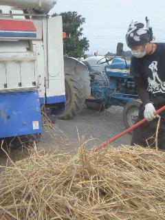 Photos: 脱穀'09 (8)