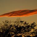 写真: 夕焼け雲、2011秋!