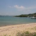 写真: 110508-5向島での瀬戸内海4