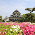 Photos: 110515-71四国中国地方ロングツーリング・岡山城