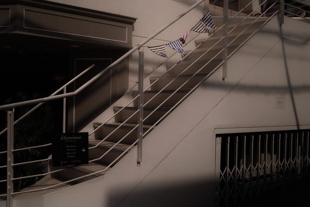 Photos: Flag