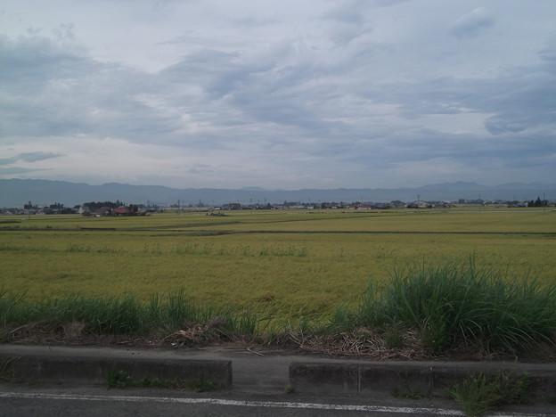 大和田 - 2