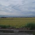 Photos: 大和田 - 2