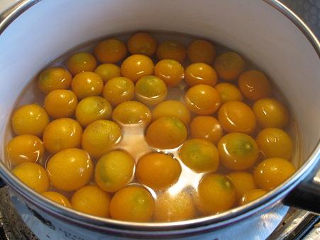 金柑の甘露煮を仕込む