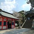 田島神社(5)