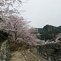 写真: 秘窯の里・大川内山、伊万里春の窯元市(24)