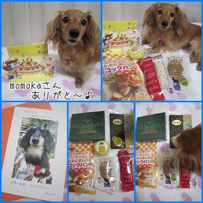 20111006 momokaさんから〜♪