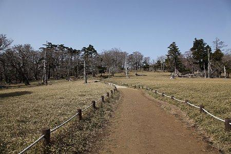 c-110504-085211 牛石ヶ原