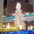 立川駅そばのクリスマスツリーその3