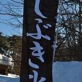 Photos: しぶき氷