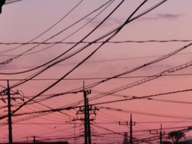 Photos: 夕焼けと電線