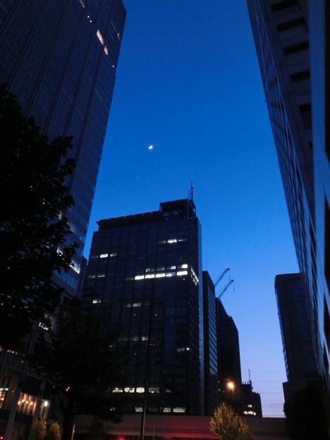 Photos: それでも月は綺麗だった!