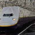 Photos: 新幹線E4系MAXやまびこ P8編成